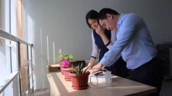 Өсімдікті автоматты түрде суаратын жаңа құрылғы
